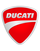Motorcycle screens for Ducati