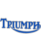Motorcycle screens for Triumph